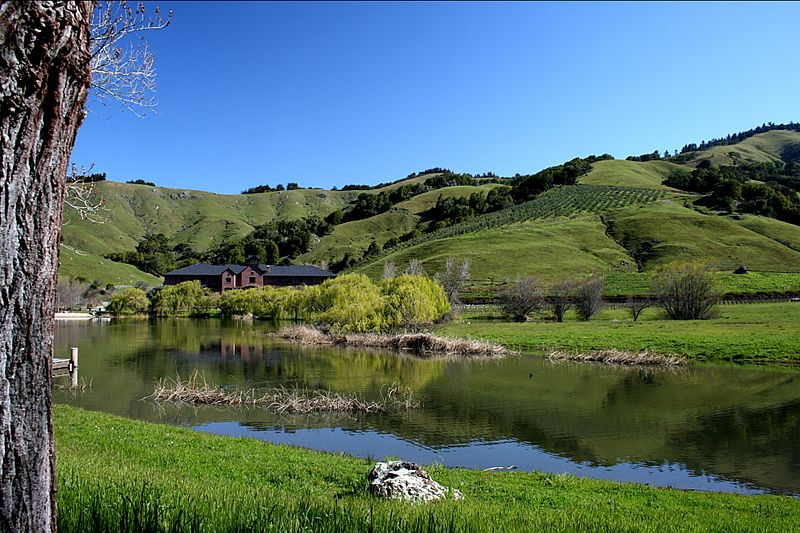 Skywalker Ranch Ewok Lake