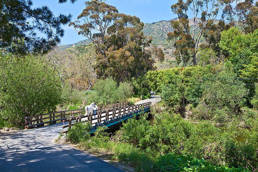 Mel Gibson Malibu Farm Land